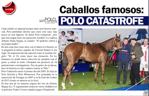 polo catastrofe -